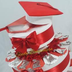 Torta a tema laurea veterinaria con targhette pergamena con nappina