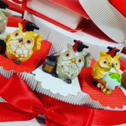 Torta con bomboniere laurea gufetti assortiti colorati