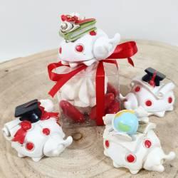Portaconfetti laurea coccinella con scatoline e confetti