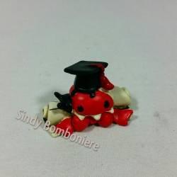 Bomboniera Coccinella Lucky con PERGAMENA e cappello da APPOGGIO fai da te per laurea AF0114100